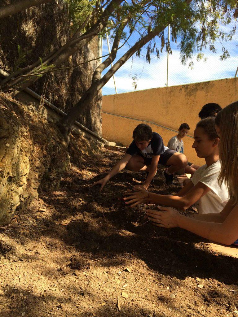 horticultura4